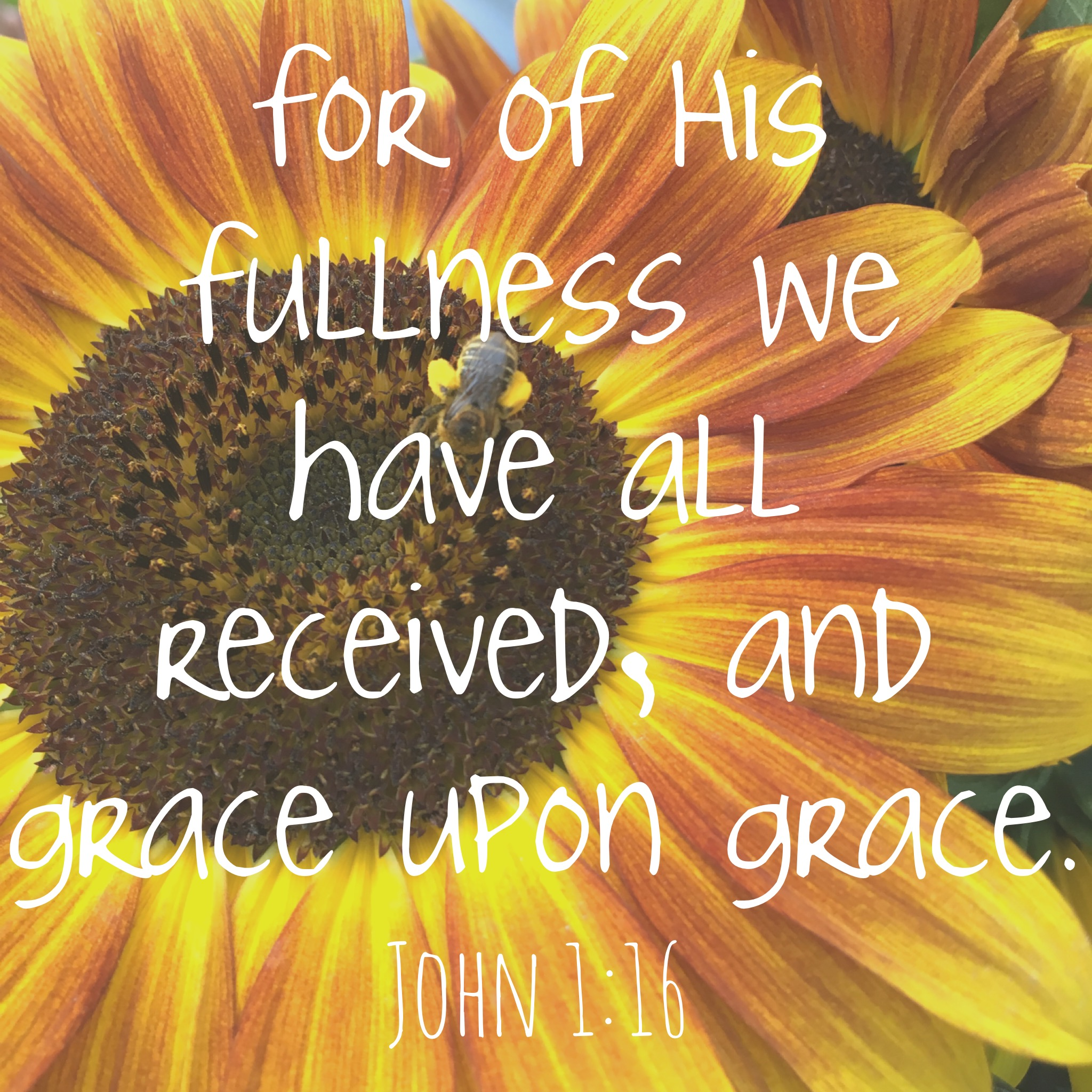 Recipe for Life Cards Week 3 John 1:16 Grace From the Family With Love
