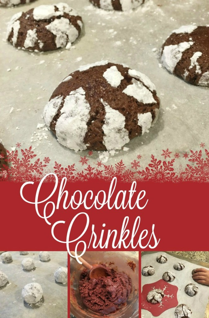 Chocolate Crinkle Cookies Chewy 12 Days of Cookies Recipe From the Family with Love Day 2