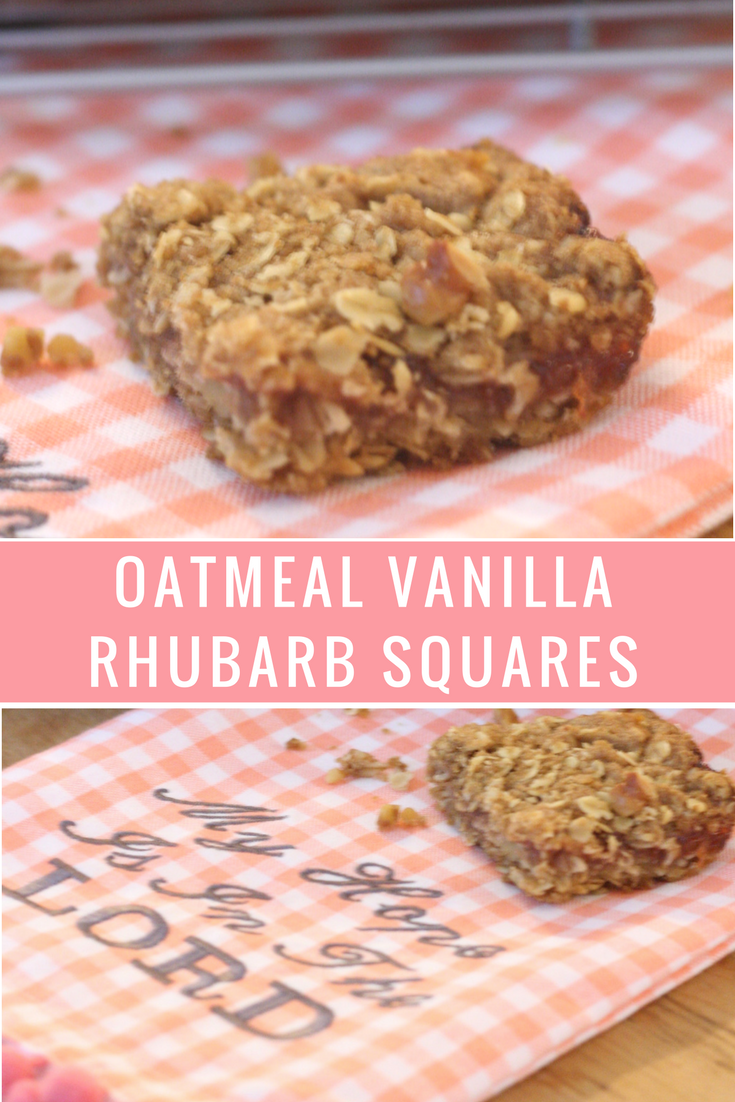 Oatmeal Vanilla Rhubarb Squares recipe - sweet vanilla scented rhubarb sauce between two layers of crispy oatmeal mixed with walnuts - From the Family with Love