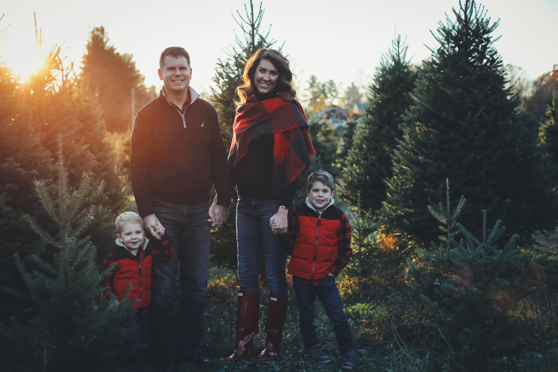 Christmas Tree Ideas For 2017